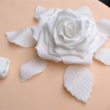 Die Blüte der Liebe